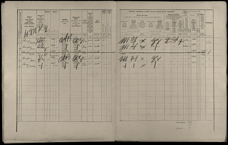 © SOkA v Písku, fond Okresní úřad Písek I, 1850–1945, sčítání lidu 1900, soudní okres Písek, lokalita Kukle, sn. 10