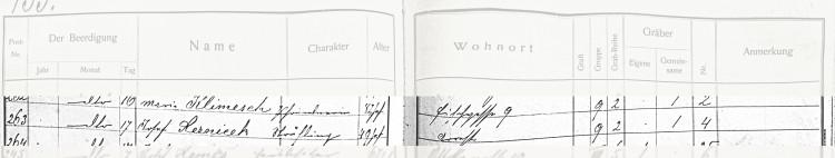 SOkA České Budějovice, Archiv města České Budějovice, hřbitovní evidence, Úmrtní kniha 1909-1912, fol. 133