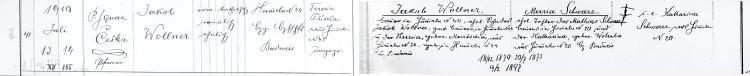Řím.-katol. f. ú. Boršov nad Vltavou, matrika N 1909–1929, fol. 19 (OÚ Boršov nad Vltavou)