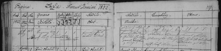 SOA Zámrsk, Sbírka matrik Východočeského kraje, řím.-katol. f.ú. Luže, inv. č. 5643, sign. 2187 (N 1796-1824), pag. 119